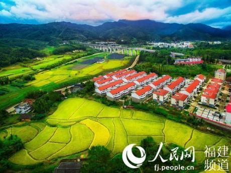 福建沙县:林改让山林活乡村兴。[阅读]