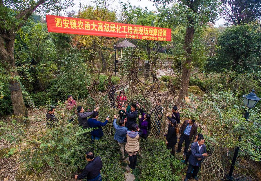 长兴苗木产业升级绿色银行