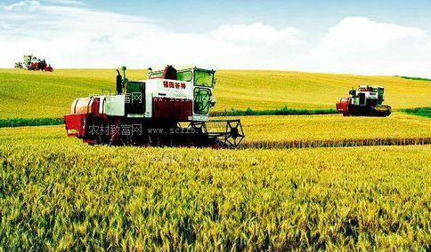 降成本还省人力 能节水更增效益  甘肃 新农技打开新天地