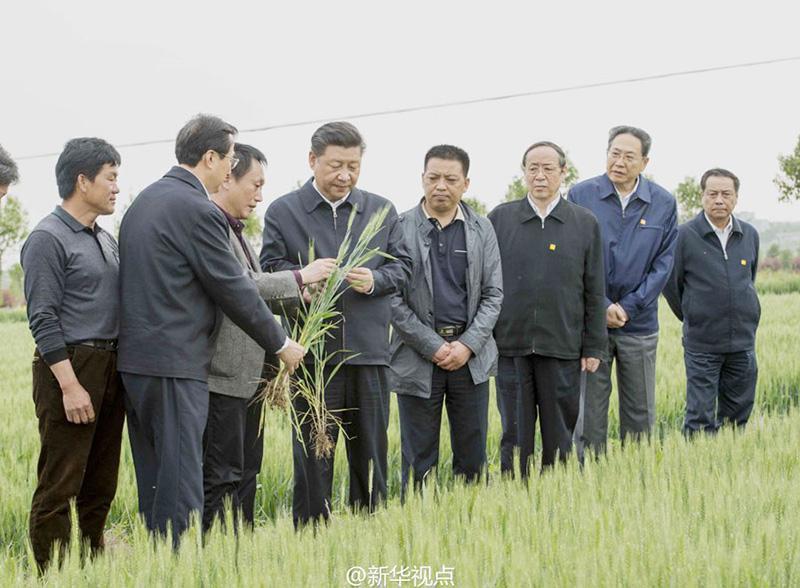 习近平:重农固本,全党工作重中之重